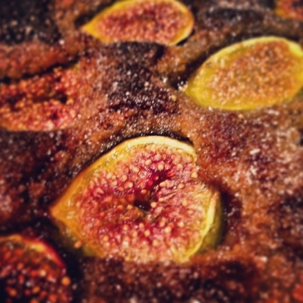 Close-Up Figs